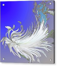 Abstract Flowers Of Light Series #4 Acrylic Print