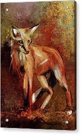 Abstract Fox Acrylic Print