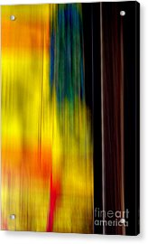 Acrylic Print featuring the photograph Abstract-from A Rolling Train by Robert Riordan