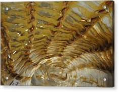 Abstract Glass 2 Acrylic Print by Marty Koch