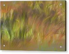 Abstract Grasses Acrylic Print by Ronald Hoggard