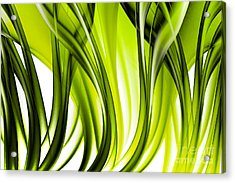 Abstract Green Grass Look Acrylic Print