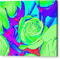 Abstract Green Roses Acrylic Print