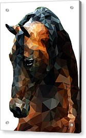 Abstract Horse Acrylic Print by Gallini Design