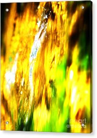 Abstract No.15 Acrylic Print by Mic DBernardo