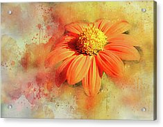 Abstract Orange Flower Acrylic Print