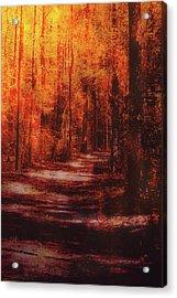 Abstract Path Acrylic Print