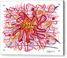 Abstract Pen Drawing Fifteen Acrylic Print by Lynne Taetzsch