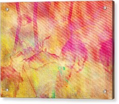 Abstract Photography 003-16 Acrylic Print by Mimulux patricia no No