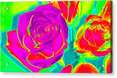 Abstract Roses Acrylic Print by Karen J Shine