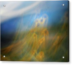 Acrylic Print featuring the photograph Abstract Sunflowers by Marilyn Hunt