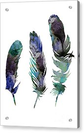 Abstract Three Feathers Watercolor Painting Acrylic Print