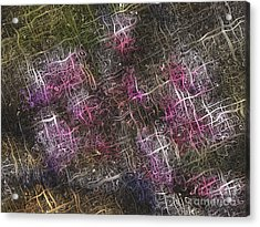 Abstract Tulip Acrylic Print