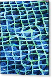 Abstract Underwater Acrylic Print by Eric  Schiabor
