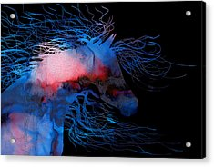 Abstract Wild Horse Red White And Blue Acrylic Print by Michelle Wrighton