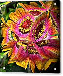 Abstract Yellow Flame Zinnia Acrylic Print by Kathy Kelly