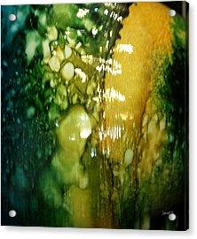 Abstraction And Brain  Acrylic Print by Fania Simon