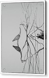 Acrylic Print featuring the photograph Abstracts On The Lake by Carolyn Dalessandro