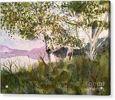 Acadia Morning Acrylic Print by Maura Satchell