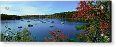 Acadia National Park In Autumn, Maine Acrylic Print by Panoramic Images