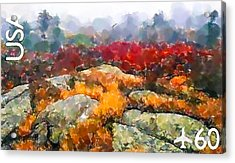 Acadia National Park Acrylic Print