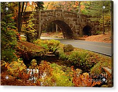 Acrylic Print featuring the photograph Acadia Stone Bridge by Alana Ranney