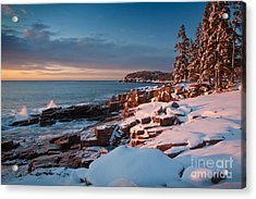 Acadian Winter Acrylic Print by Susan Cole Kelly