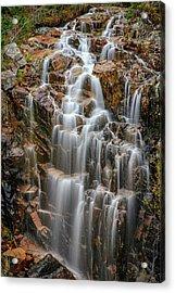 Acadia's Hadlock Falls Acrylic Print by Rick Berk