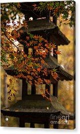 Acer Pagoda Acrylic Print