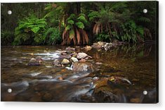 Acrylic Print featuring the photograph Acheron River by Tim Nichols
