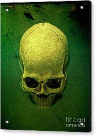 Acid Pool Skull Acrylic Print by Edward Fielding