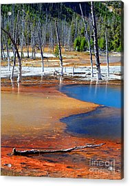 Acid Soup Yellowstone Acrylic Print