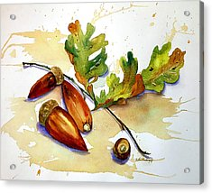 Acorns And Leaves Acrylic Print