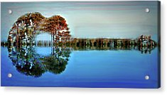 Acoustic Guitar At Gordon's Pond Acrylic Print