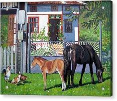 across Bulgaria 7 Acrylic Print by Stoian Pavlov
