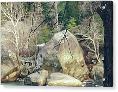 Across From Eagle Falls Acrylic Print