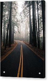 Across The Forest Acrylic Print