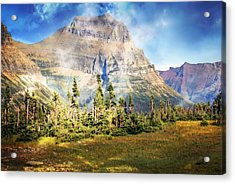 Across The Meadow Acrylic Print by Marty Koch