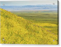 Acrylic Print featuring the photograph Across The Plain by Marc Crumpler