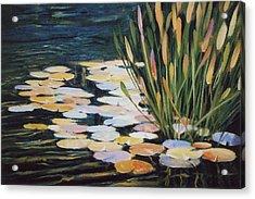 Across The Pond Acrylic Print by Ed Lucey