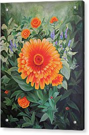 Acrylic Flower Painting - Zoozinnia Acrylic Print by Avril Whitney