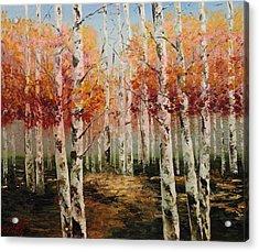 Acrylic Msc 096 Acrylic Print