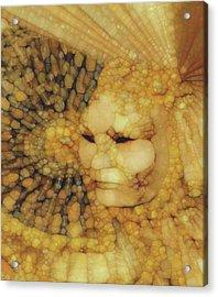 Ad Astra Acrylic Print by Jack Zulli