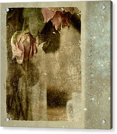 Ad Multos Annos Acrylic Print by Inesa Kayuta