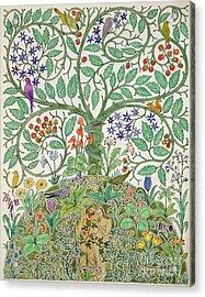 Adam And Eve Design  Acrylic Print