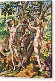 Adam And Eve Acrylic Print by Theodore de Bry