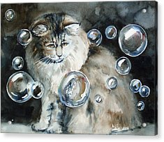 Adelaide And Bubbles Acrylic Print