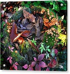 Adirondack Autumn Bouquet Acrylic Print