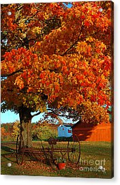 Acrylic Print featuring the photograph Adirondack Autumn Color by Diane E Berry