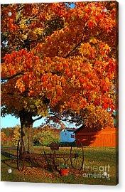 Adirondack Autumn Color Acrylic Print by Diane E Berry
